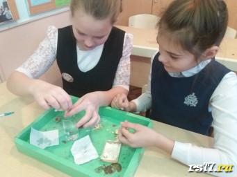 Девочки вымывают тесто, чтобы получить крахмал и белок